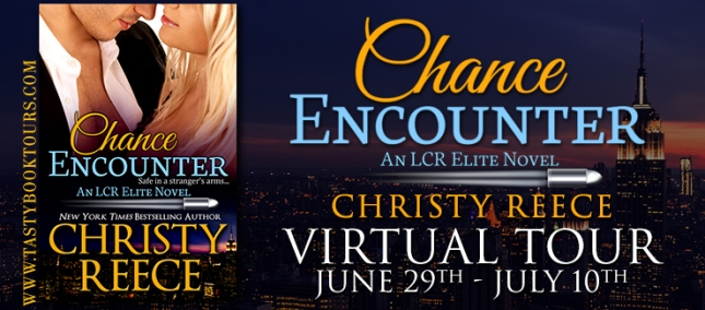 chance-encounter-christy-reece-virtual-tour
