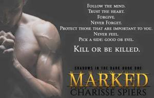 marked teaser 3
